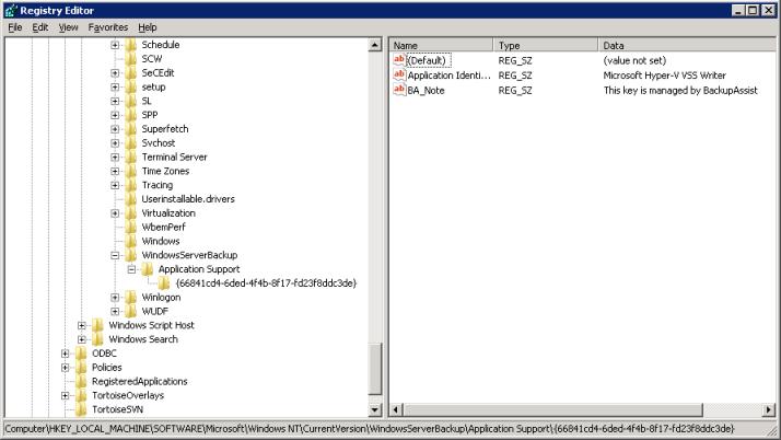 Windows Server Backup VSS Application Support