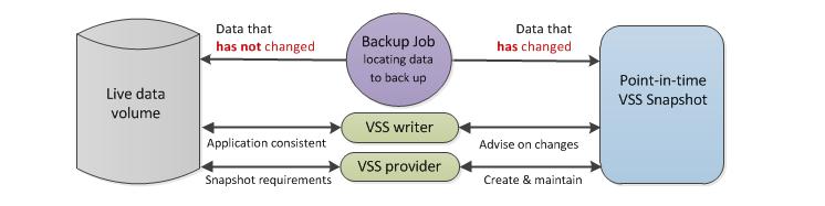 how to create discord server backup